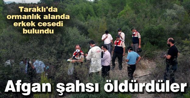 Taraklı'da ormanlık alanda erkek cesedi bulundu