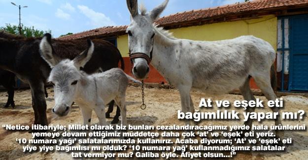 At ve eşek eti bağımlılık yapar mı?…