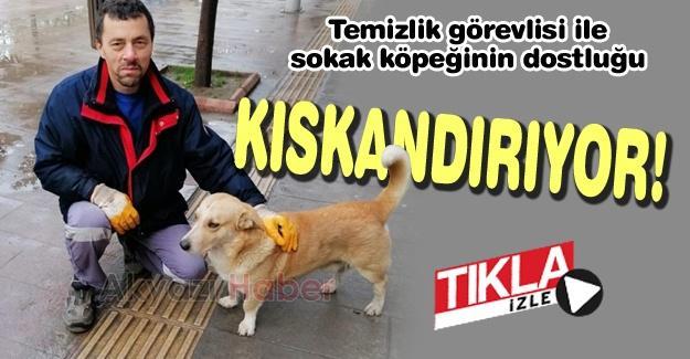 Temizlik görevlisi ile sokak köpeğinin dostluğu kıskandırıyor!