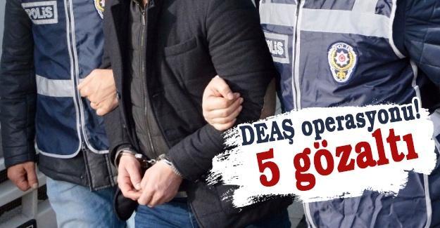 DEAŞ operasyonu! 5 gözaltı