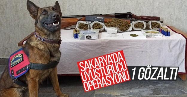 Sakarya'da uyuşturucu operasyonu: 1 gözaltı