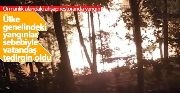 Ormanlık alandaki ahşap restoranda yangın