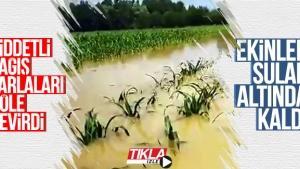 Şiddetli yağış tarlaları göle çevirdi