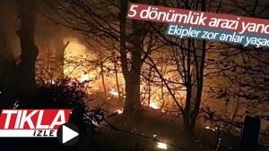 Ormanlık alanda çıkan yangın paniğe neden oldu